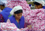 Needlewomen in Dhaka, Bangladesh.